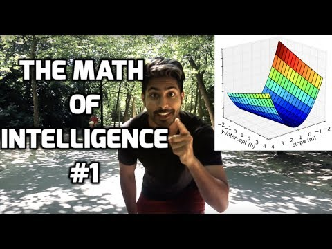 The Math of Intelligence