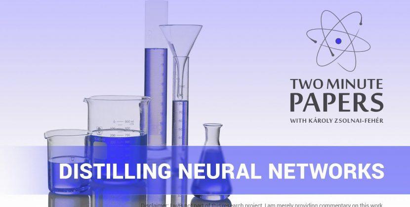 Distilling Neural Networks
