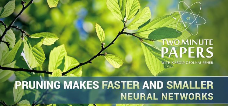 Pruning Neural Networks