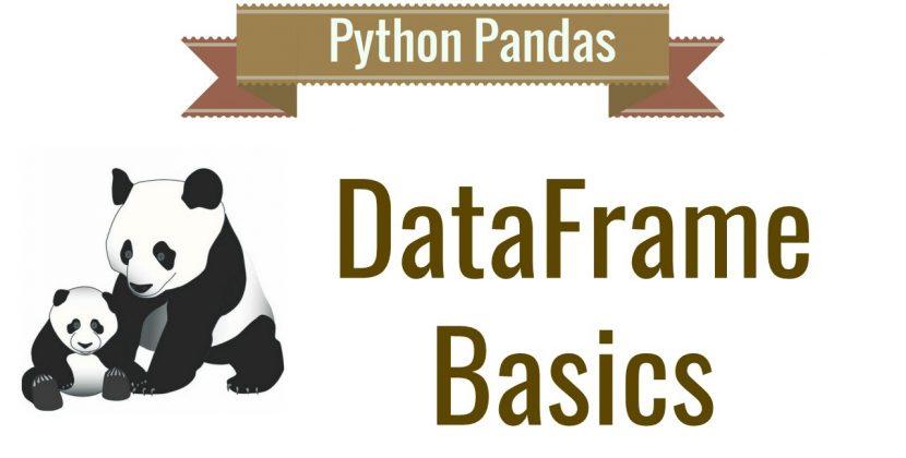 Python Pandas Dataframe Basics