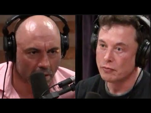 Elon Musk on Artificial Intelligence