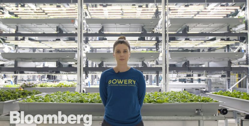 Is Vertical Farming the Future of Agriculture?