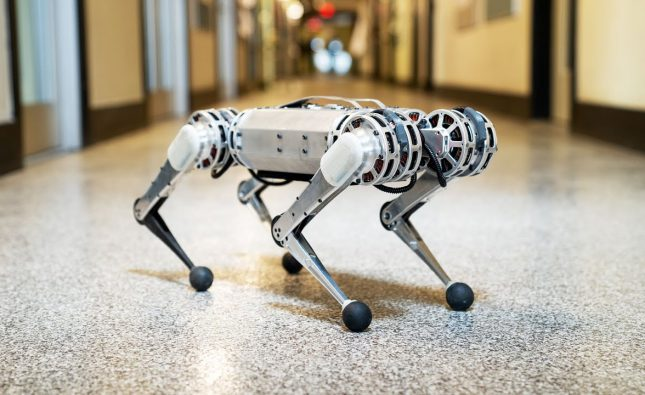 Backflipping MIT Mini Cheetah Robot