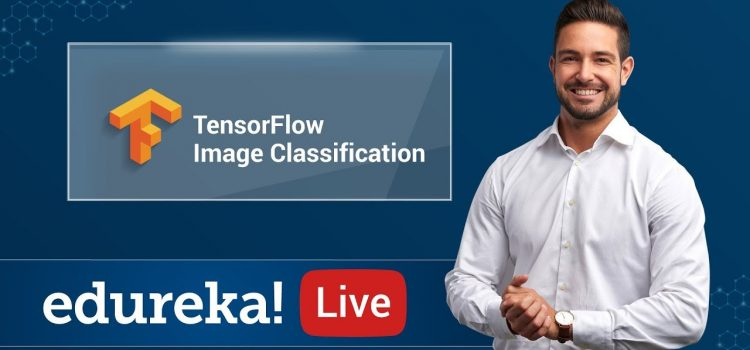 Build Your Own Image Classifier In Tensorflow