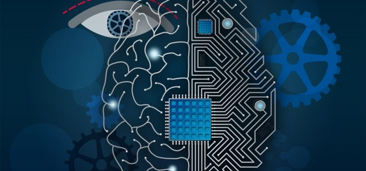 For Better Deep Neural Network Vision, Add Feedback Loops