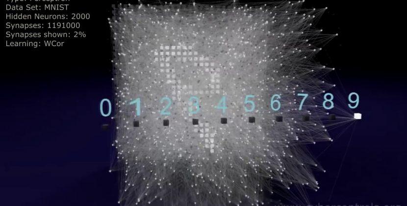 Neural Network 3D Simulation
