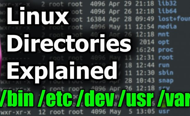 Linux File System and Structure Explained