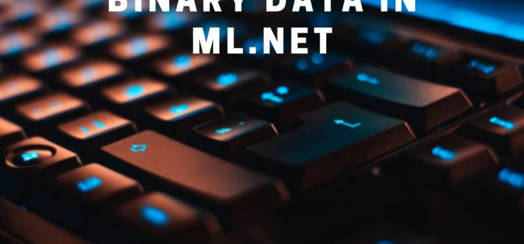 Saving and Loading Binary Data in ML.NET
