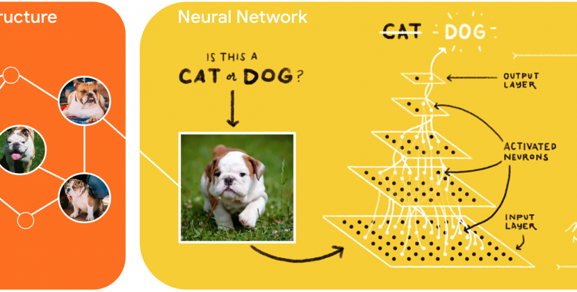 TensorFlow's Neural Structured Learning Makes Deep Learning Super Easy
