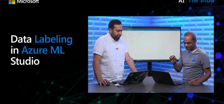 Data Labeling in Azure ML Studio