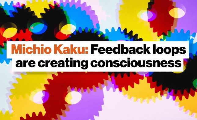 Do Feedback Loops Create Consciousness?