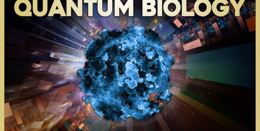 Quantum Biology – Enzymes, the Engines of Life