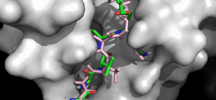 Shortcuts to Simulation: How Deep Learning Accelerates Virtual Screening for Drug Discovery