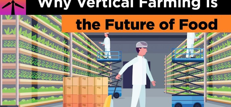Is Vertical Farming is the Future of Food?