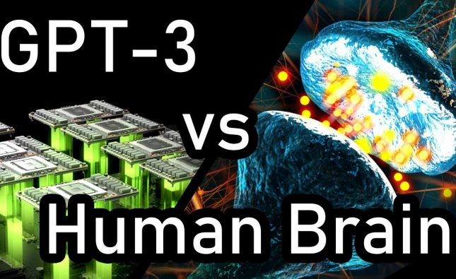 GPT-3 vs Human Brain