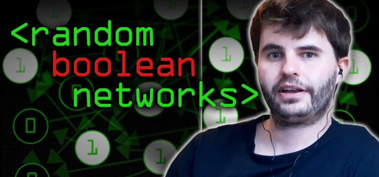 What are Random Boolean Networks