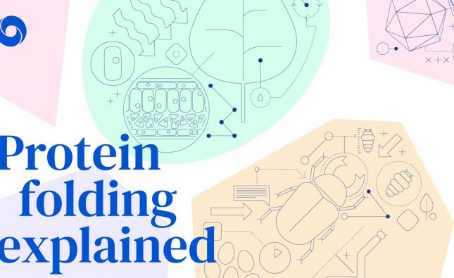 Protein Folding Explained and Why DeepMind's New Solution is a Big Deal